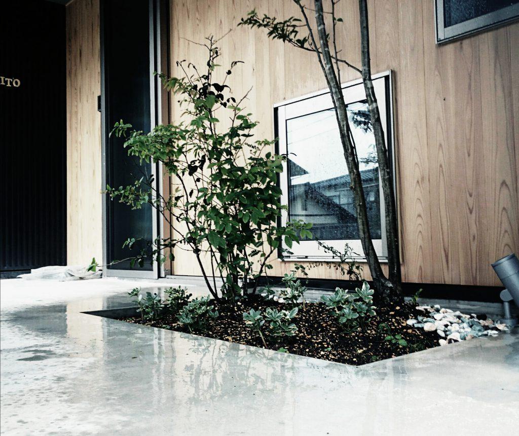 kosumo_204443